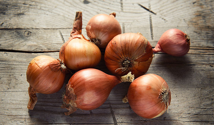 The Humble Onion a True Health Star