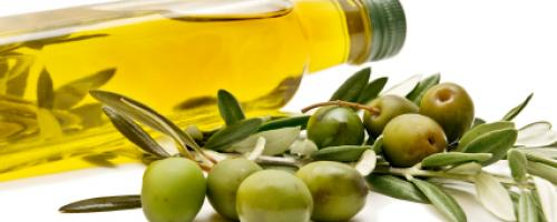 Why Choose Olive Oil?